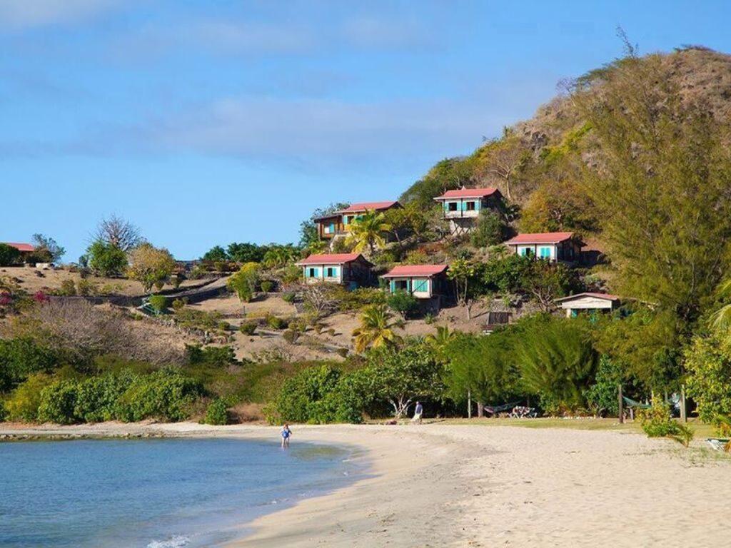 Nevis scene